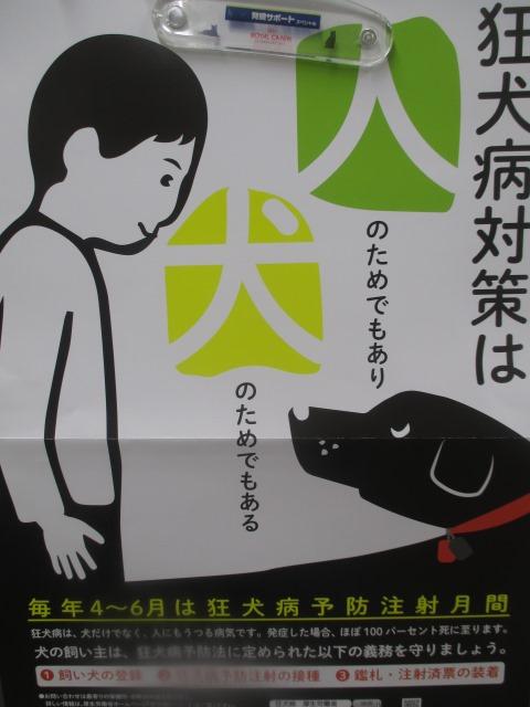 うつる 狂犬病